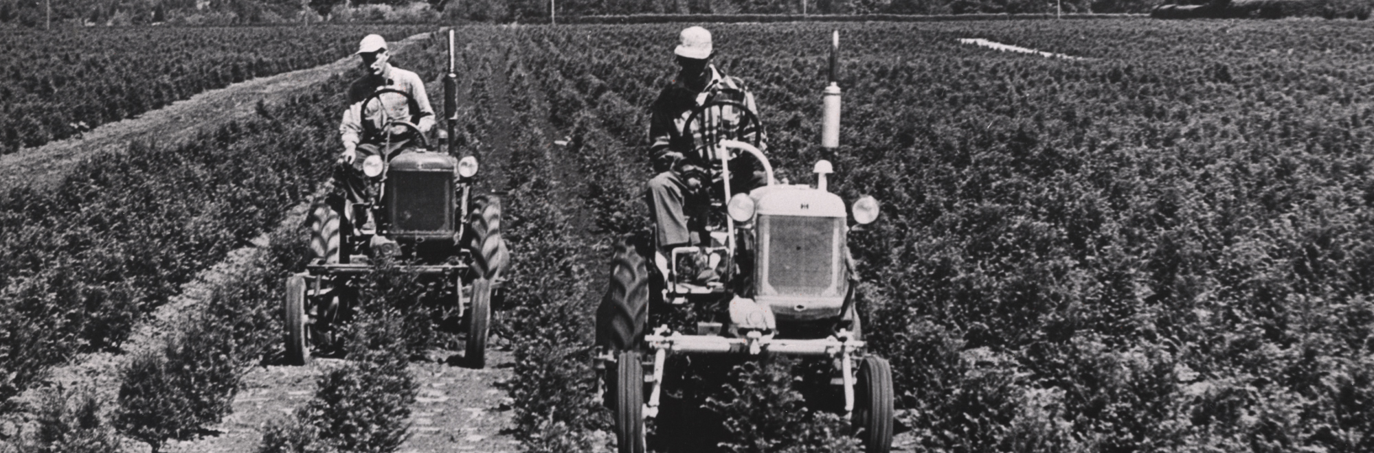 men on tractors in an agricultural field