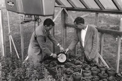 historical image of two men in a greenhouse