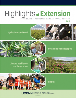 Highlights of Extension report - 2019 cover