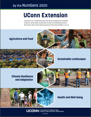 Extension impact sheet cover 2020