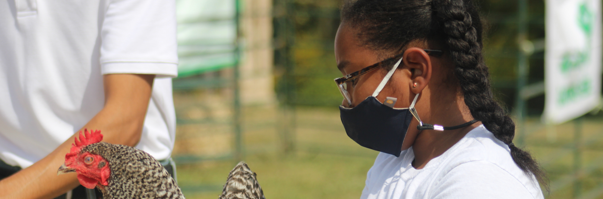 4-H youth member with a chicken