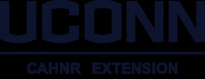 Extension wordmark